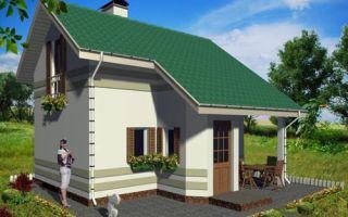 Проект дачного дома 46 кв.м — 101-046