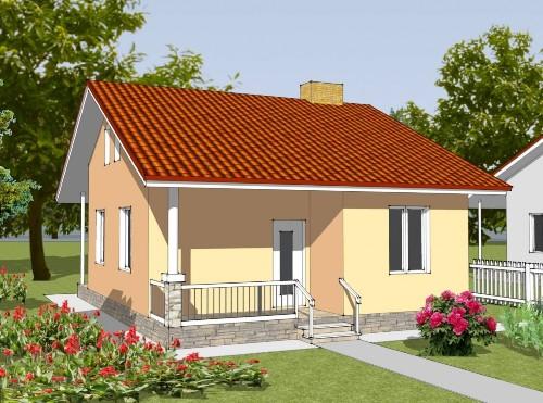 Общий вид проекта одноэтажного дома 44 кв.м