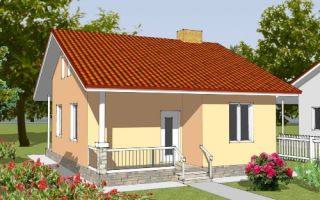Проект одноэтажного дома 44 кв.м — 101-044